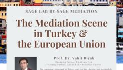 The Mediation Scene in Turkey & the European Union